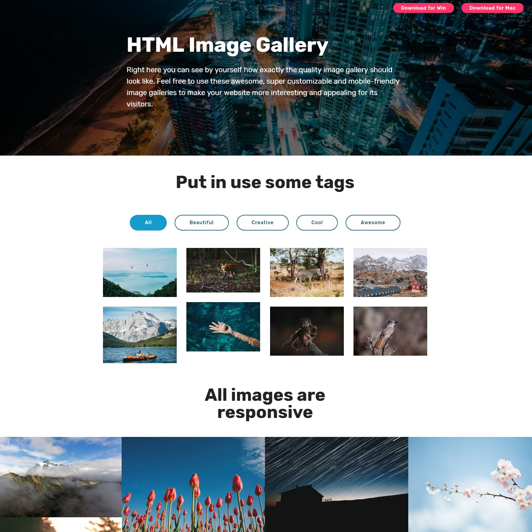 CSS Bootstrap Photo Gallery