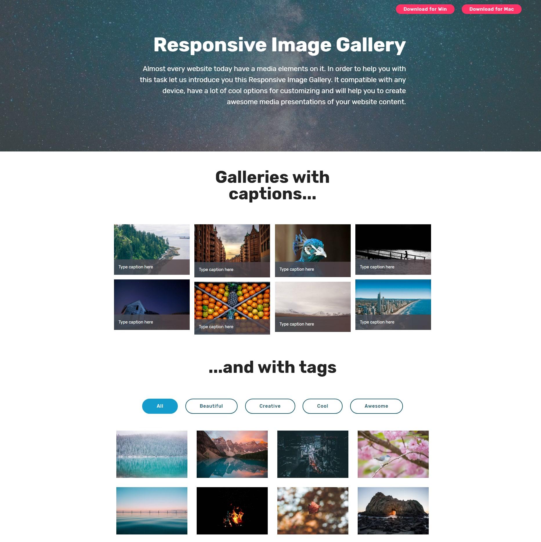 HTML Bootstrap Illustration Gallery